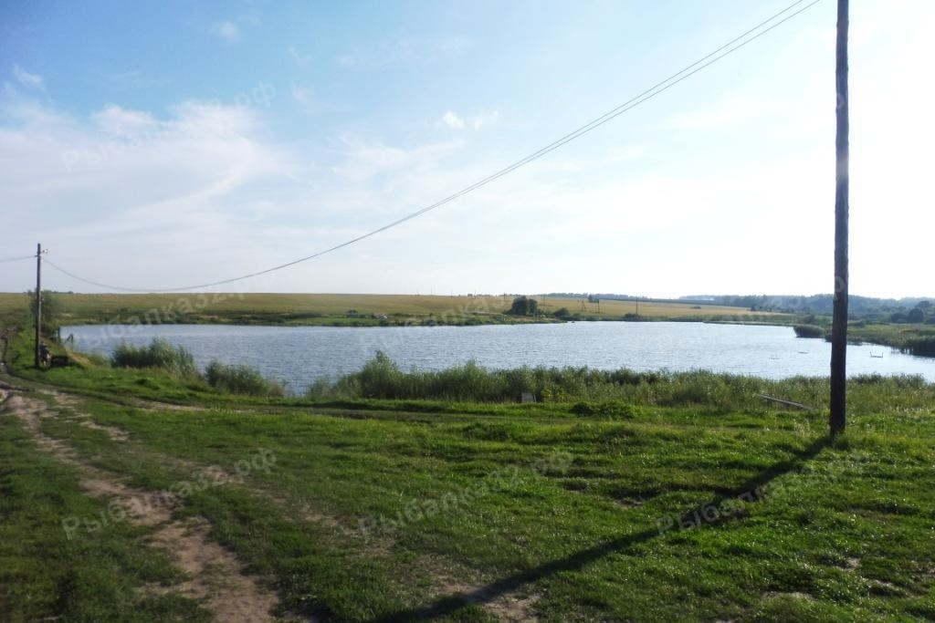 рыбалка на озере долгое московская область